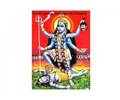 Love Marriage Problem Solution Babaji +91-7414802072