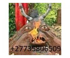 QUICK RESULTS WOMAN SPIRITUAL HERBALIST HEALER & LOST LOVE SPELL CASTER +27735806509