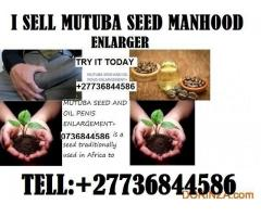 mutuba seed and oil for 100% penis enlargement +27736844586
