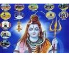 The King Of All Astrologer Baba Ji +91-9878986116